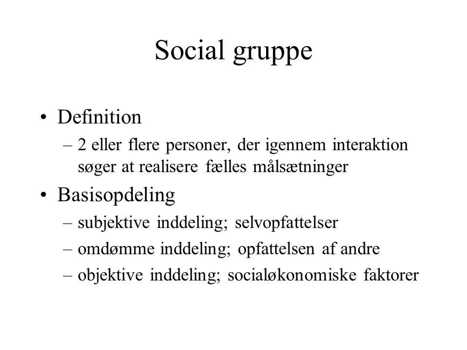 Social gruppe Definition Basisopdeling