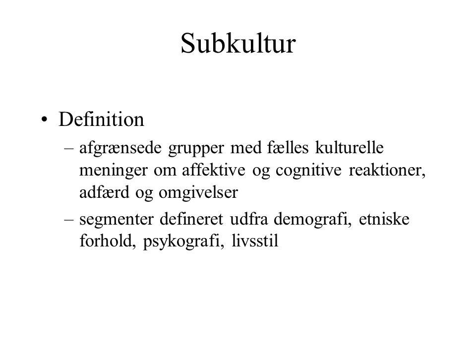 Subkultur Definition. afgrænsede grupper med fælles kulturelle meninger om affektive og cognitive reaktioner, adfærd og omgivelser.