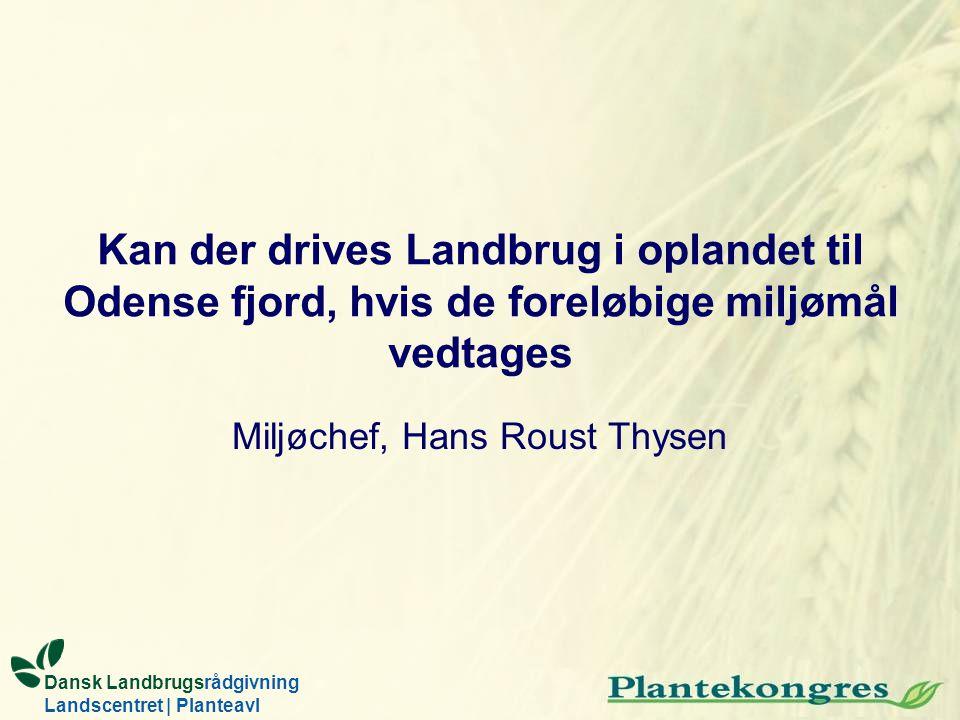 Miljøchef, Hans Roust Thysen