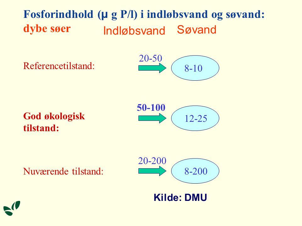 Fosforindhold (µ g P/l) i indløbsvand og søvand: dybe søer Indløbsvand