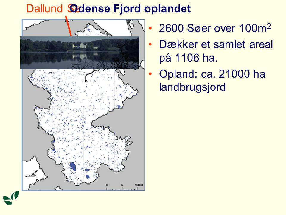 Dallund Sø Odense Fjord oplandet. 2600 Søer over 100m2.