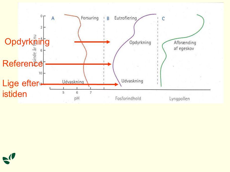 Opdyrkning Reference Lige efter istiden