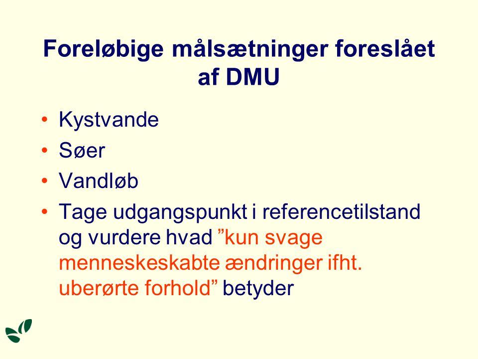 Foreløbige målsætninger foreslået af DMU