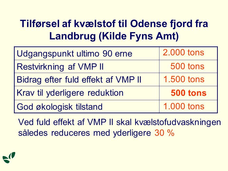 Tilførsel af kvælstof til Odense fjord fra Landbrug (Kilde Fyns Amt)