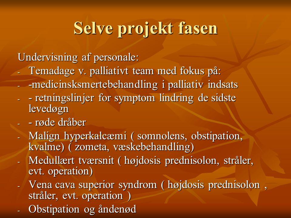 Selve projekt fasen Undervisning af personale: