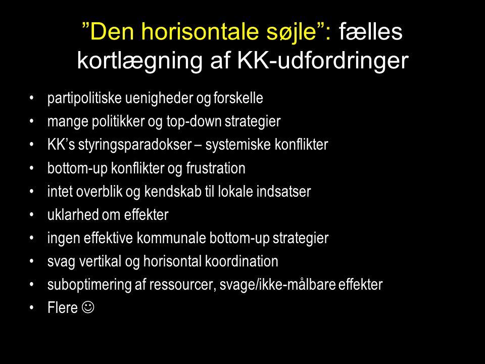 Den horisontale søjle : fælles kortlægning af KK-udfordringer