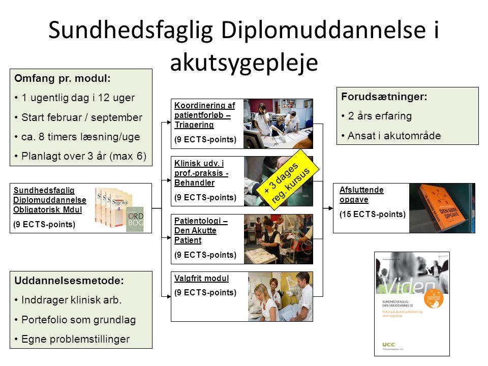 Sundhedsfaglig Diplomuddannelse i akutsygepleje