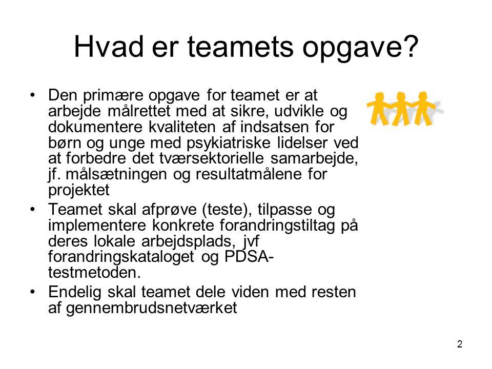 Hvad er teamets opgave