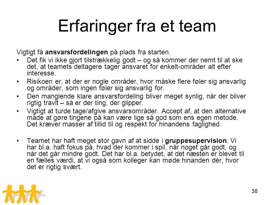 Erfaringer fra et team Vigtigt få ansvarsfordelingen på plads fra starten.