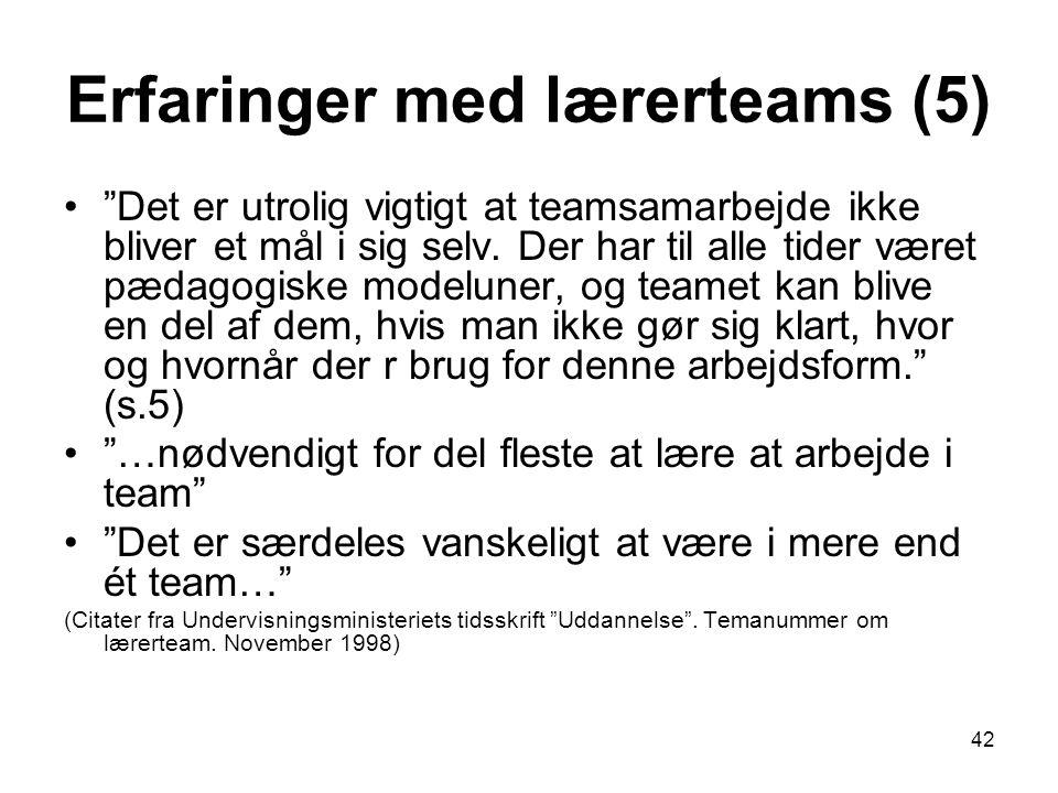 Erfaringer med lærerteams (5)