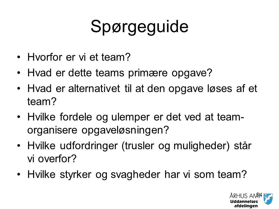 Spørgeguide Hvorfor er vi et team Hvad er dette teams primære opgave
