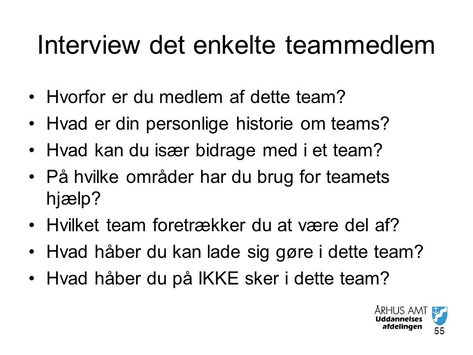 Interview det enkelte teammedlem