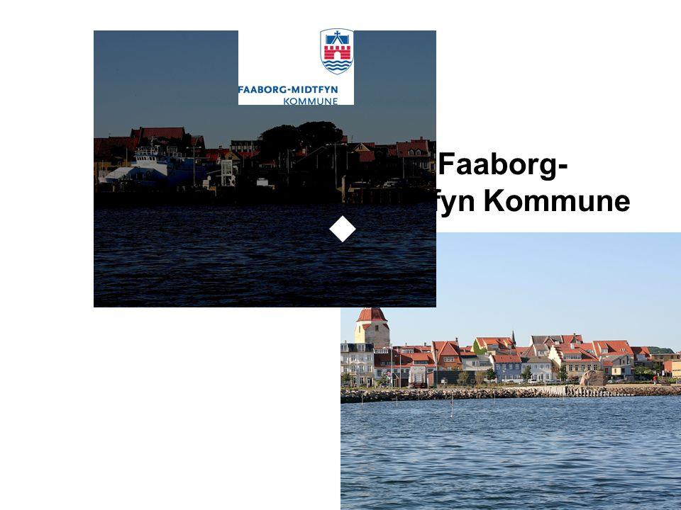 Lean i Faaborg- Midtfyn Kommune