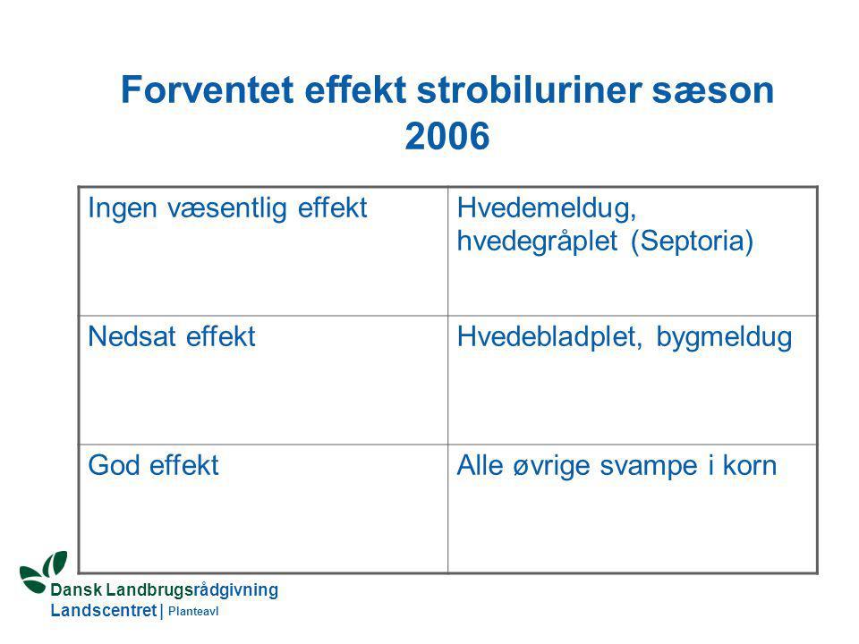 Forventet effekt strobiluriner sæson 2006