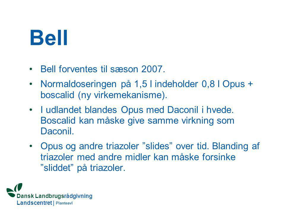 Bell Bell forventes til sæson 2007.