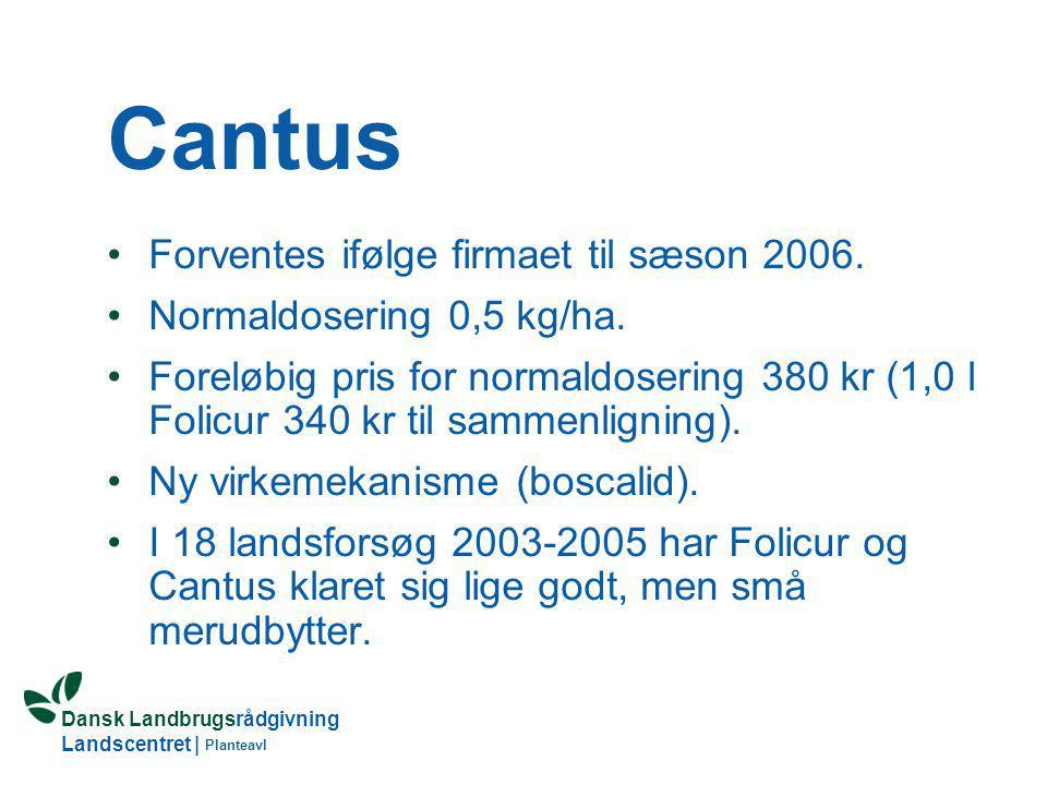 Cantus Forventes ifølge firmaet til sæson 2006.