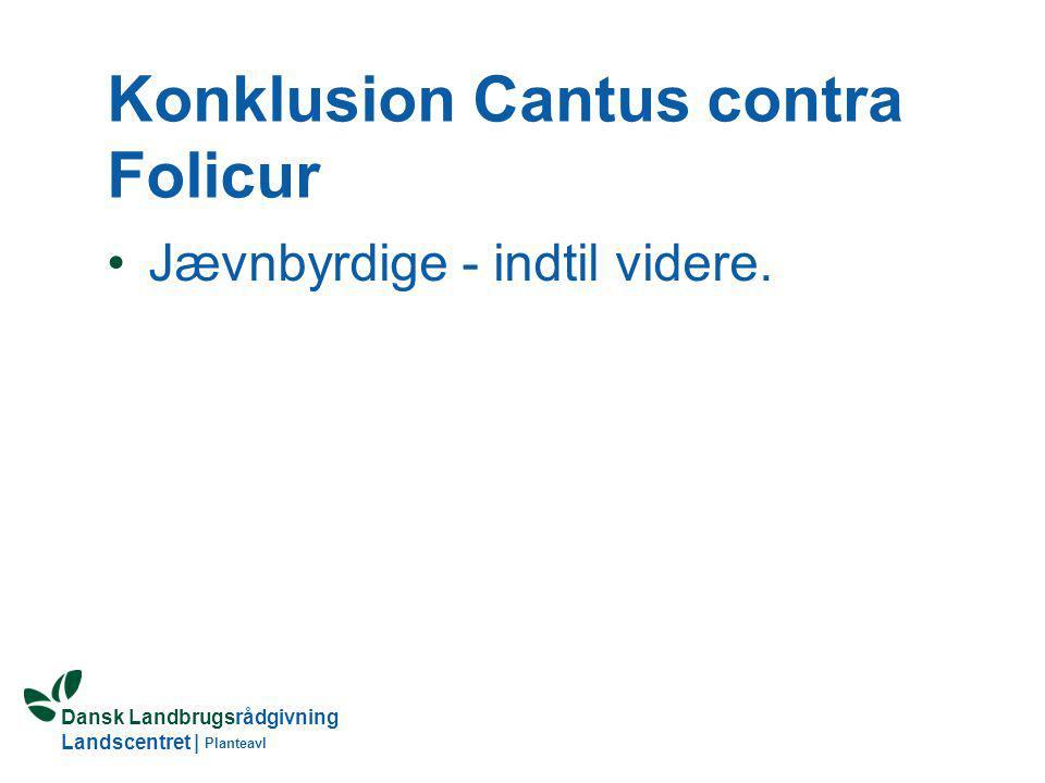 Konklusion Cantus contra Folicur