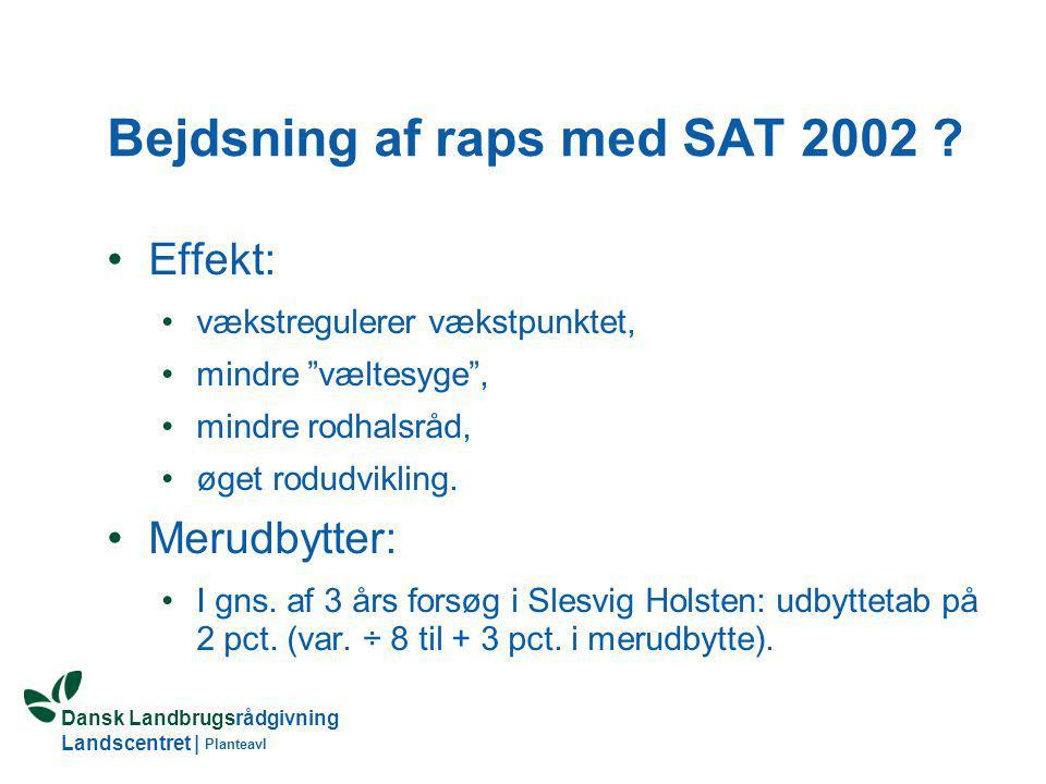 Bejdsning af raps med SAT 2002