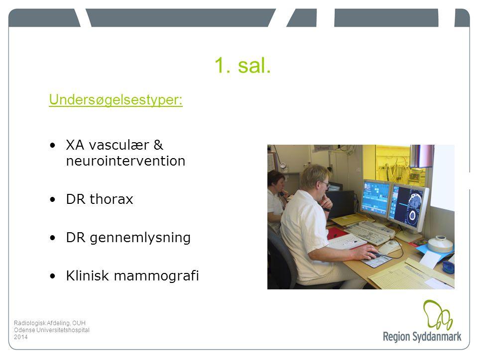 1. sal. Undersøgelsestyper: XA vasculær & neurointervention DR thorax