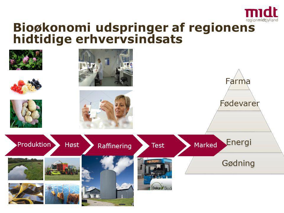 Bioøkonomi udspringer af regionens hidtidige erhvervsindsats