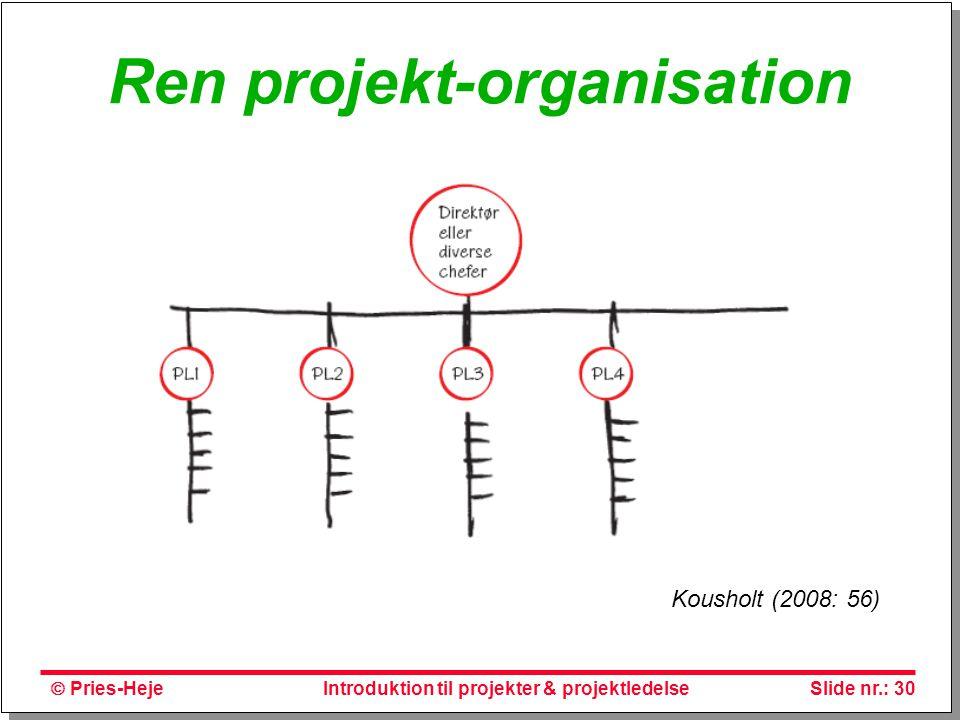 Ren projekt-organisation