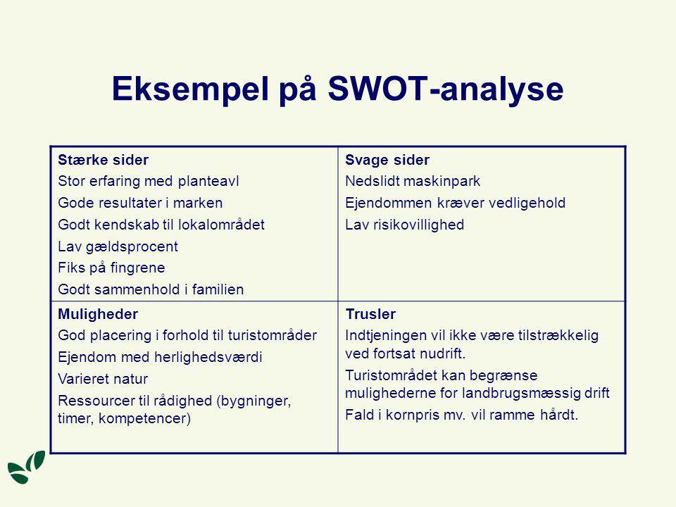 Eksempel på SWOT-analyse