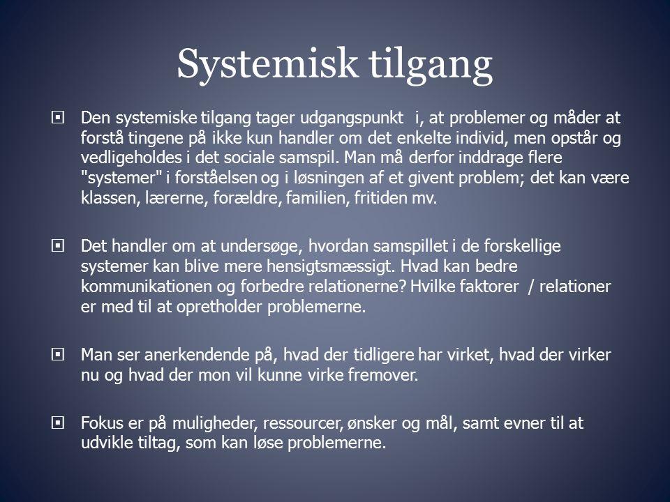 Systemisk tilgang