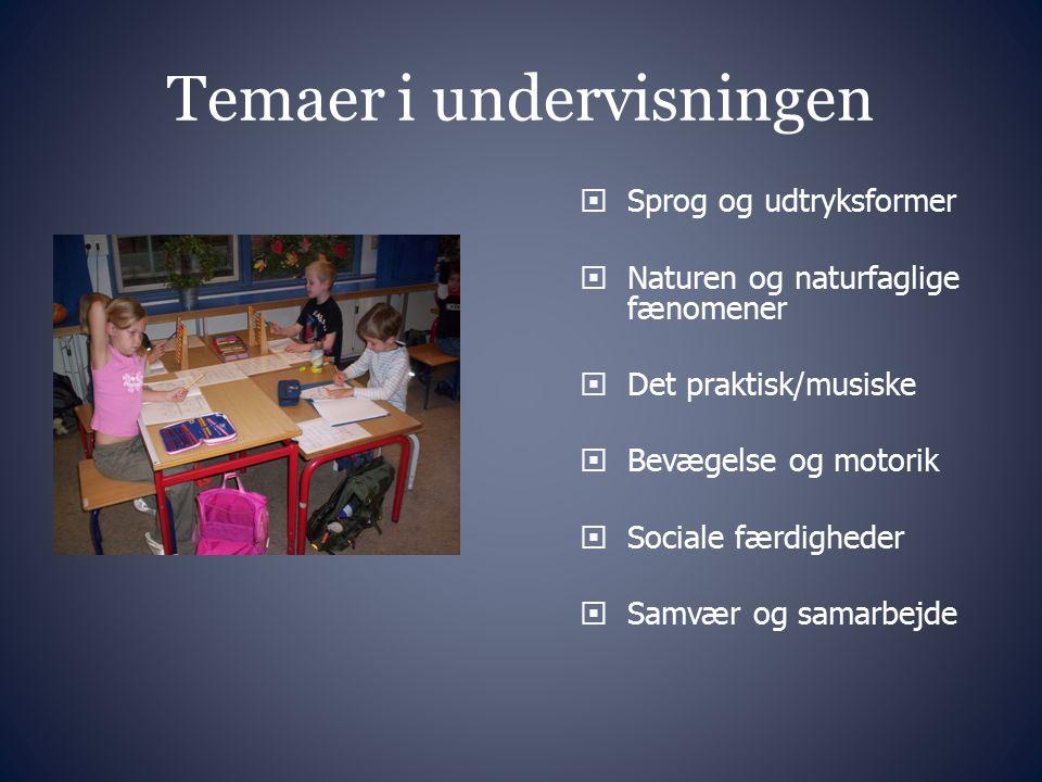 Temaer i undervisningen
