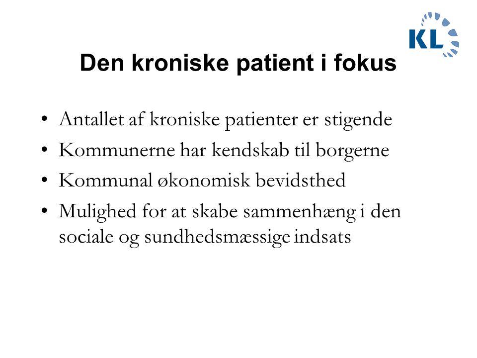 Den kroniske patient i fokus