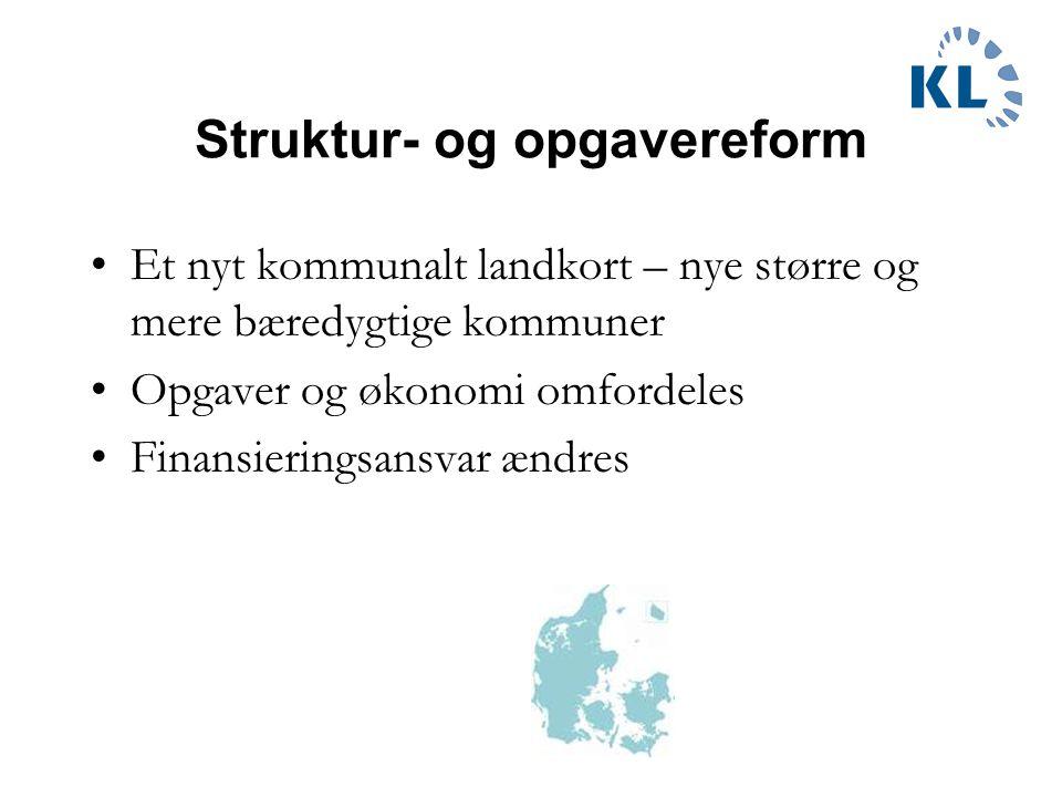 Struktur- og opgavereform