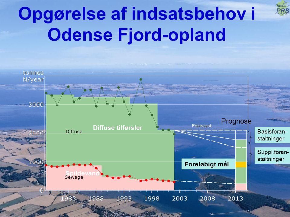 Opgørelse af indsatsbehov i Odense Fjord-opland