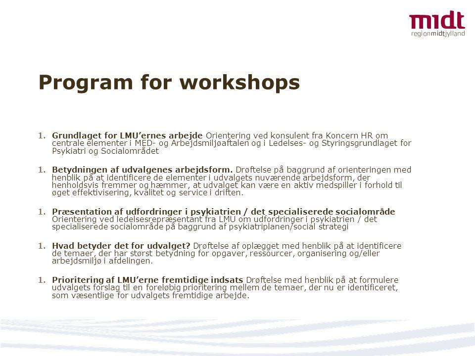 Program for workshops