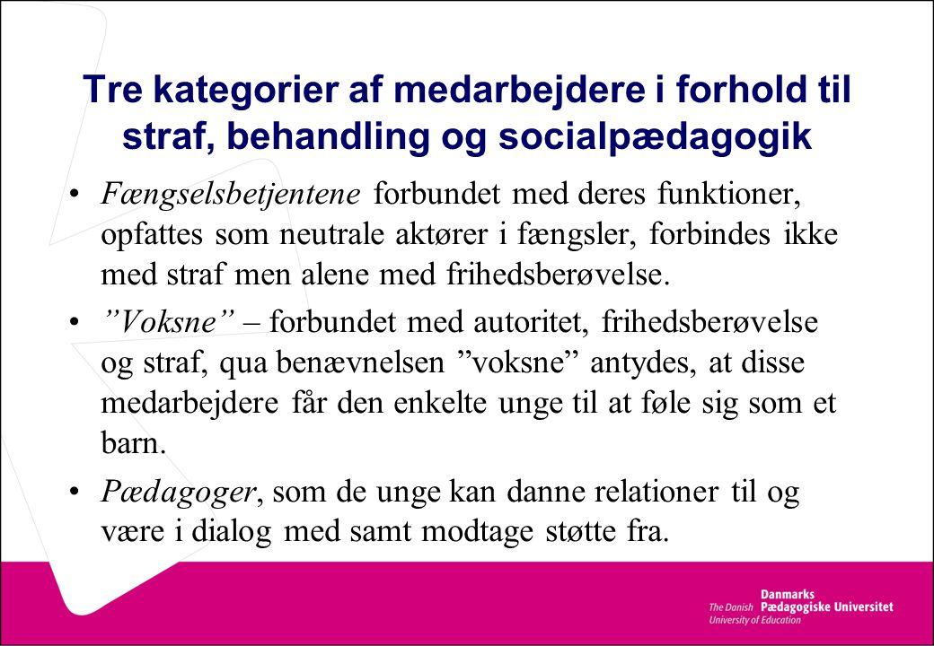 Tre kategorier af medarbejdere i forhold til straf, behandling og socialpædagogik
