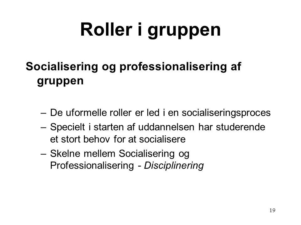 Roller i gruppen Socialisering og professionalisering af gruppen