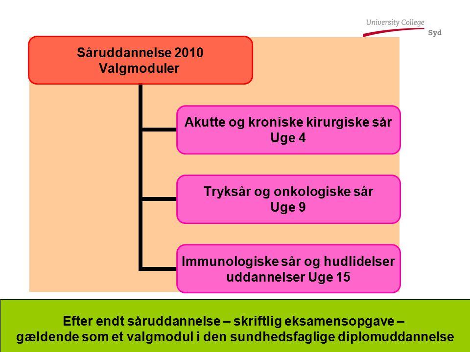 Efter endt såruddannelse – skriftlig eksamensopgave –