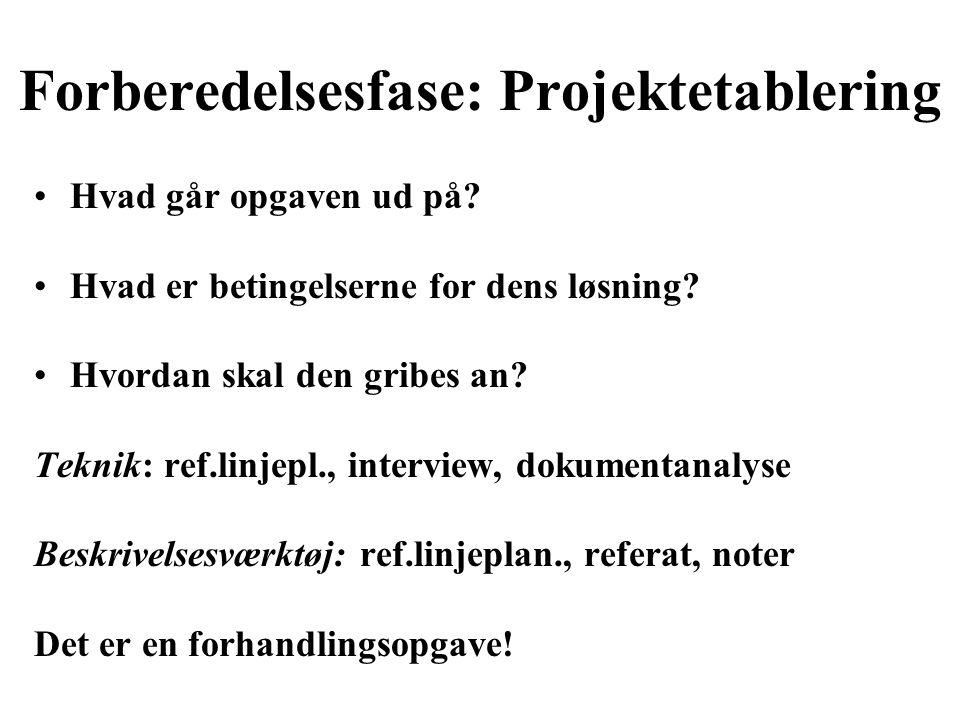 Forberedelsesfase: Projektetablering