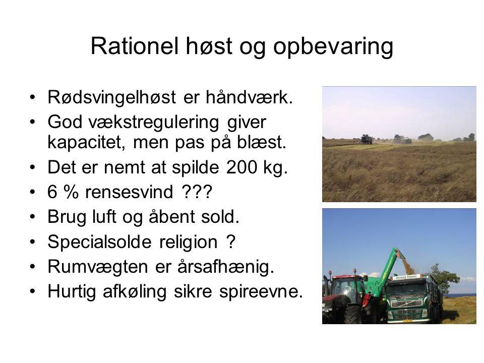 Rationel høst og opbevaring
