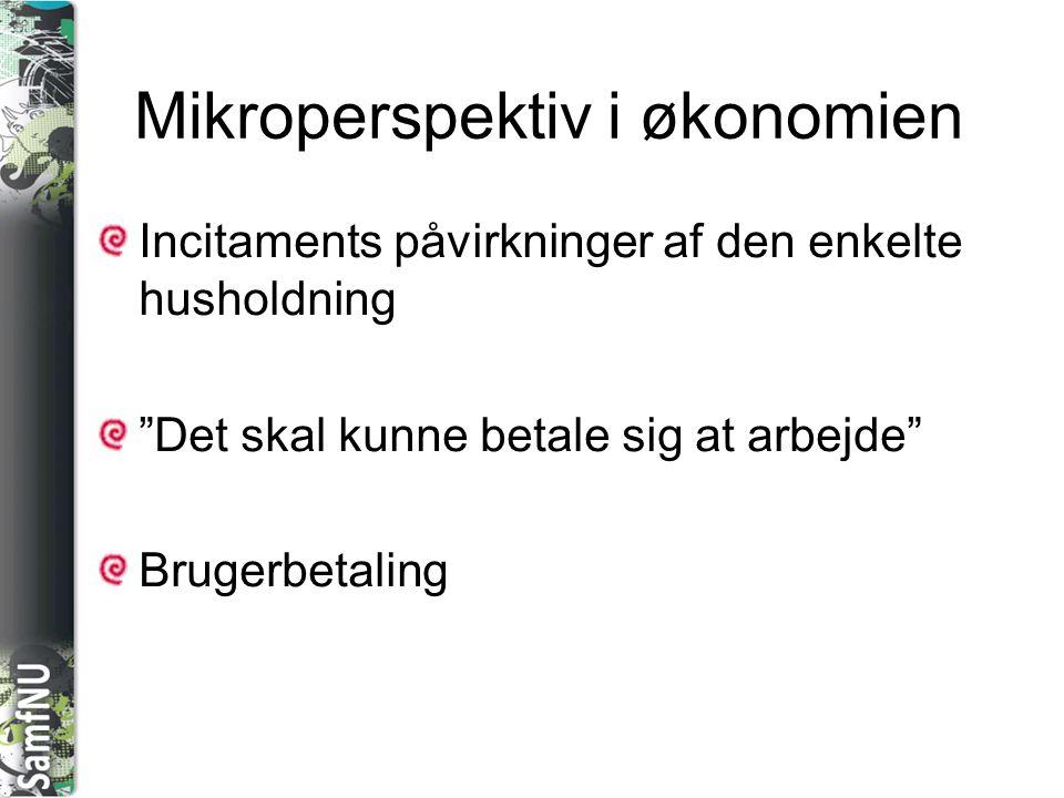 Mikroperspektiv i økonomien
