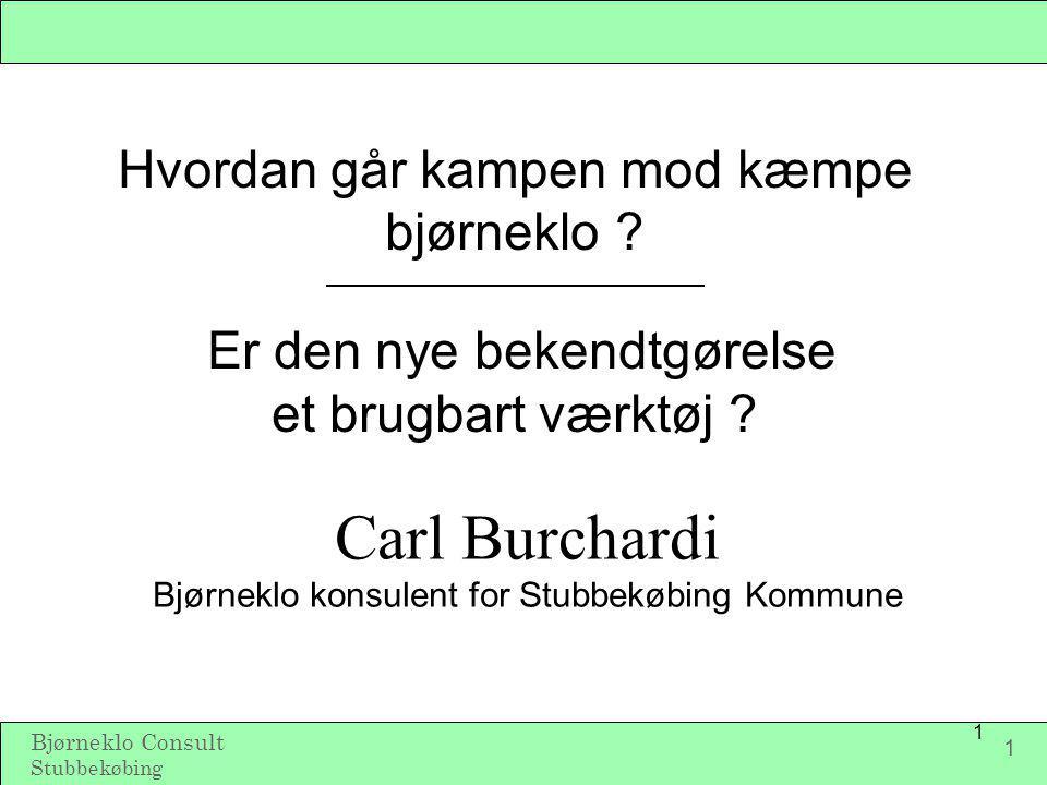 Carl Burchardi Bjørneklo konsulent for Stubbekøbing Kommune