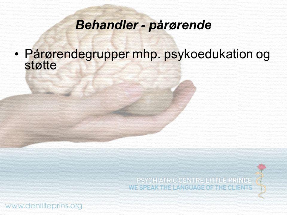 Behandler - pårørende Pårørendegrupper mhp. psykoedukation og støtte