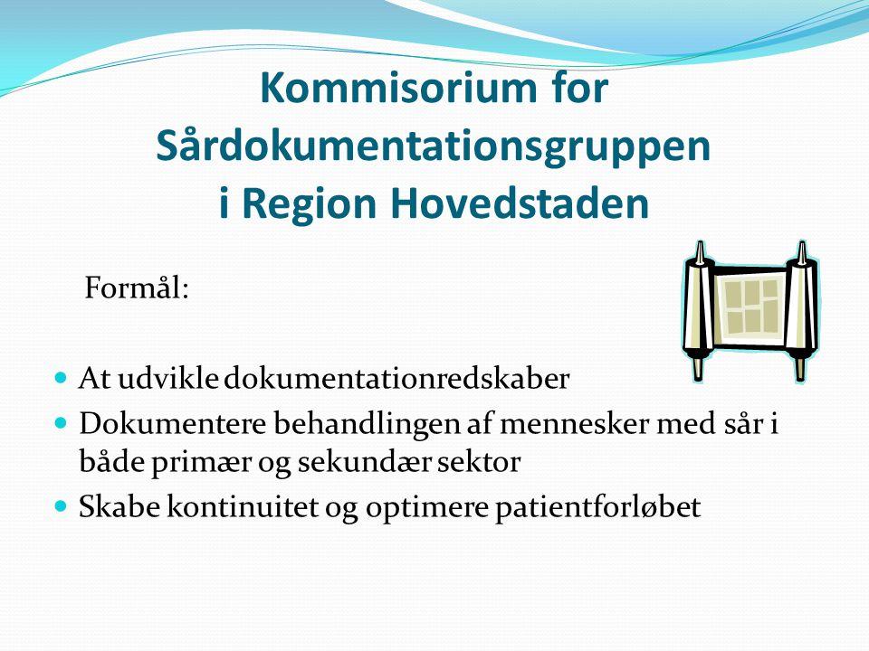 Kommisorium for Sårdokumentationsgruppen i Region Hovedstaden