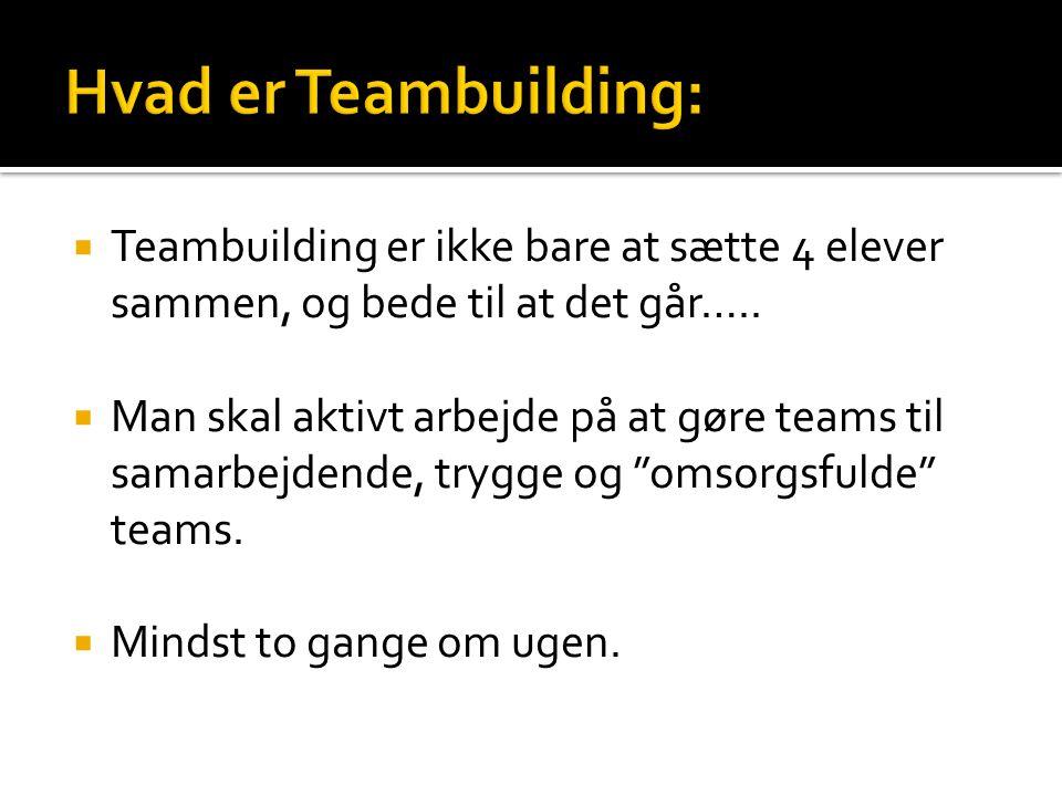 Hvad er Teambuilding: Teambuilding er ikke bare at sætte 4 elever sammen, og bede til at det går…..