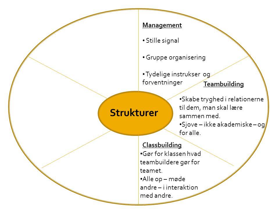Strukturer Management Stille signal Gruppe organisering