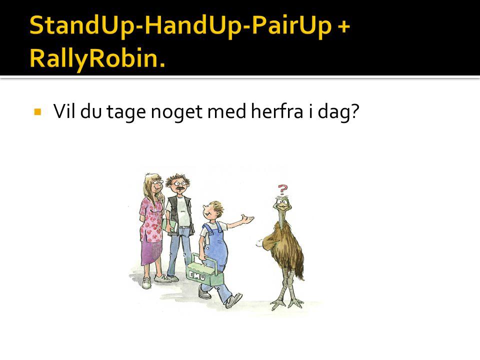 StandUp-HandUp-PairUp + RallyRobin.