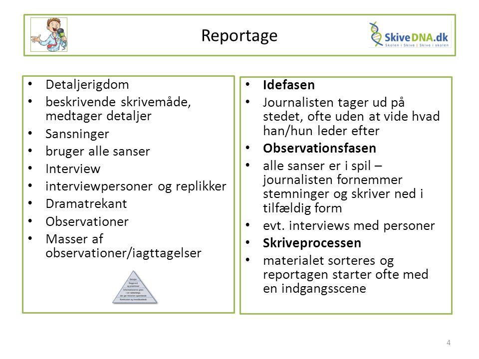 Reportage Detaljerigdom Idefasen