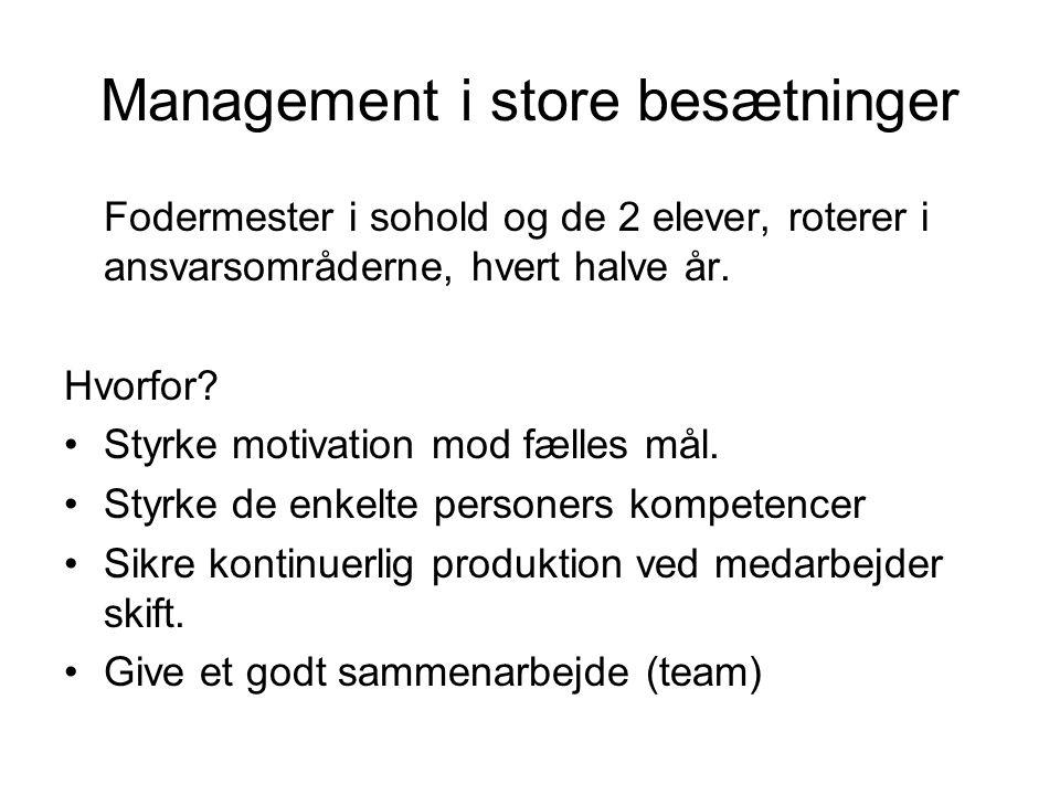 Management i store besætninger