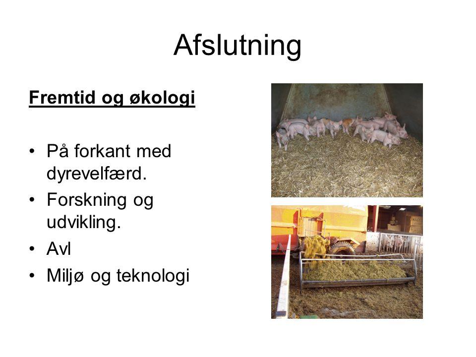 Afslutning Fremtid og økologi På forkant med dyrevelfærd.