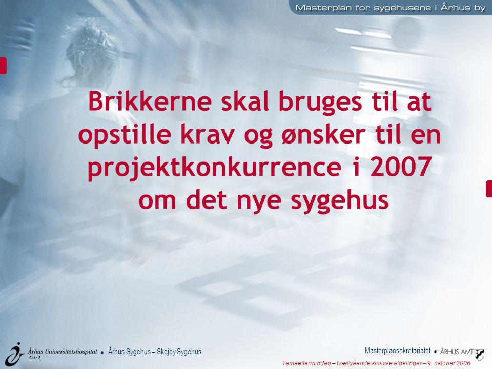 Brikkerne skal bruges til at opstille krav og ønsker til en projektkonkurrence i 2007 om det nye sygehus