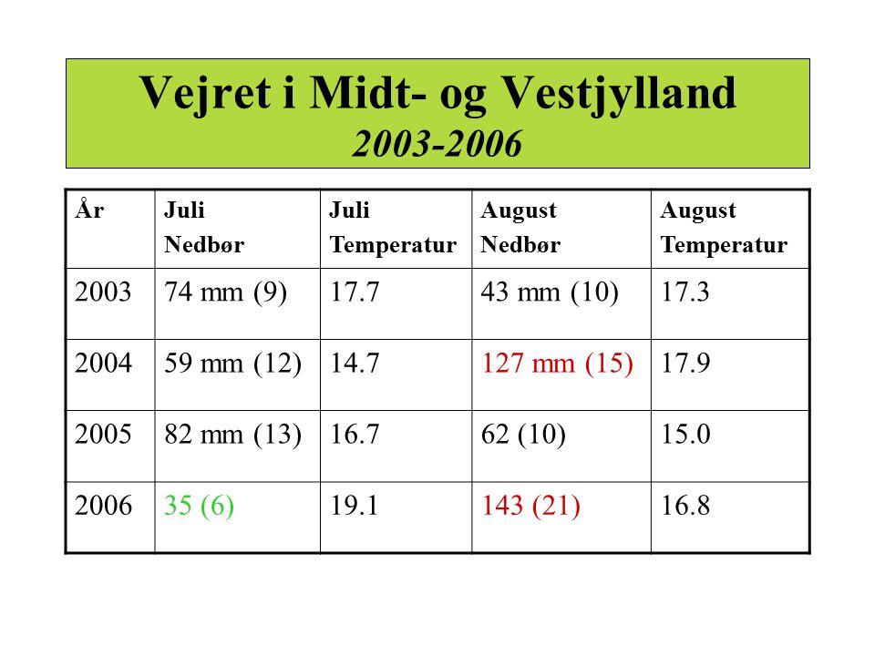 Vejret i Midt- og Vestjylland 2003-2006