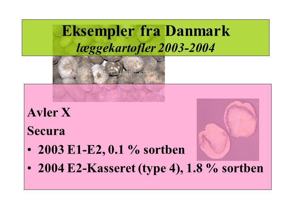 Eksempler fra Danmark læggekartofler 2003-2004